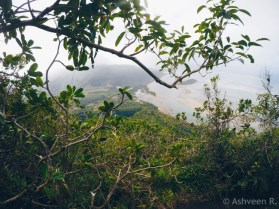 Hiking Le Morne Mountain - Scenic Views